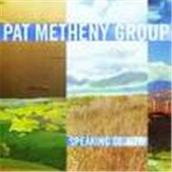 Cover Pat Metheny - Speaking of now