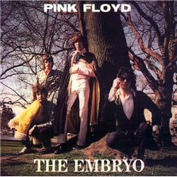 Cover Pink Floyd - Embryo