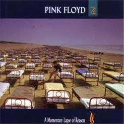 Cover Pink Floyd - A momentary lapse of the reason
