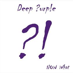 Cover Deep Purple - Now What?!