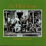 The Waterboys -Fisherman's Blues