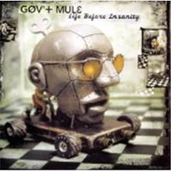 Cover Gov't Mule - Life Before Insanity