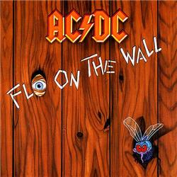 Cover di Fly on the Wall