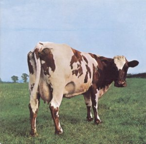 Copertina di Pink Floyd Atom Heart Mother