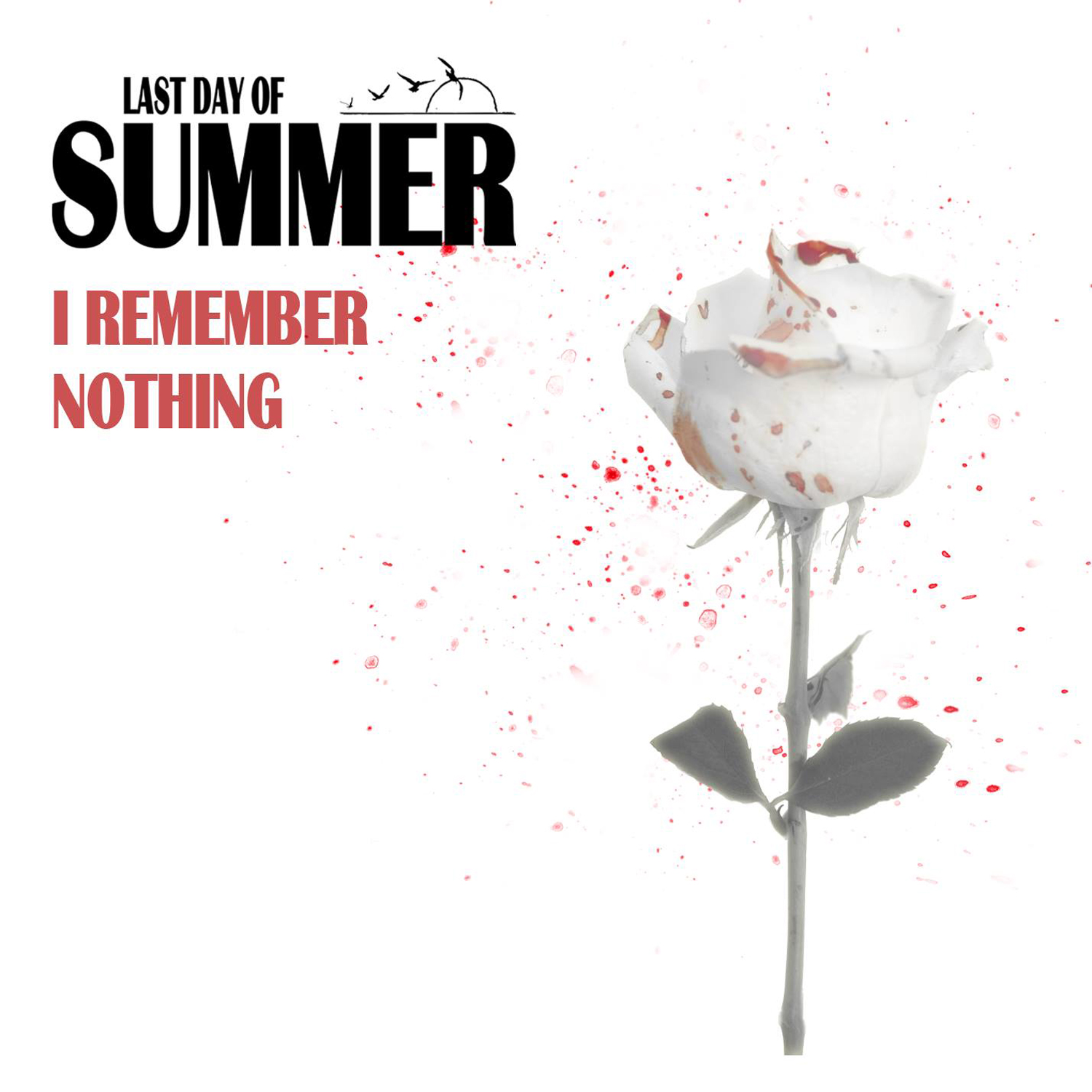Copertina di Last Day Of Summer I Remember Nothing
