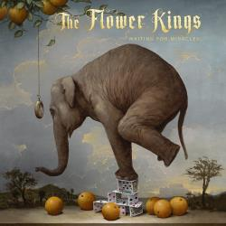 Copertina di The Flower Kings Waiting For Miracles