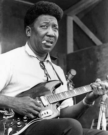 Immagine di Muddy Waters